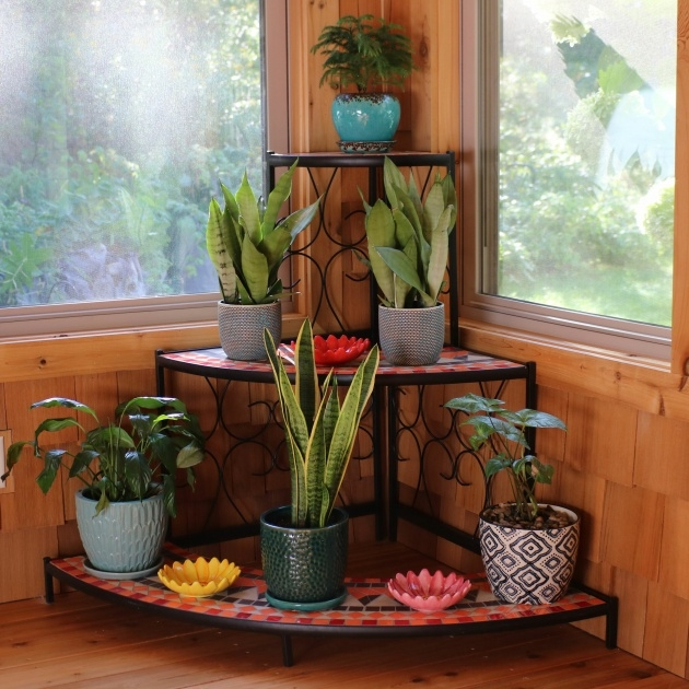 Insanely Corner Plant Stand Image