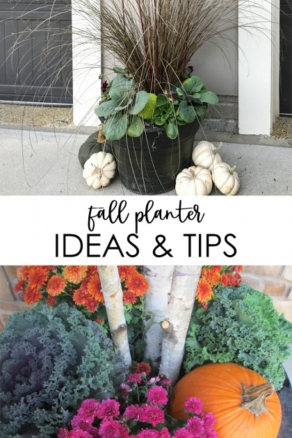 Insanely Fall Planter Ideas Image