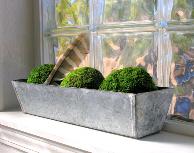 Insanely Galvanised Planter Boxes Image