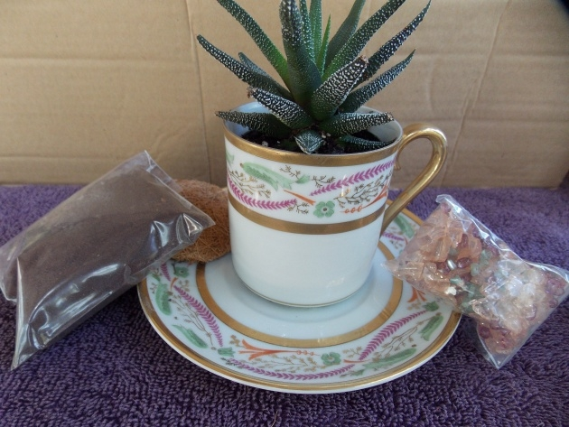 Insanely Tea Cup Planter Photo