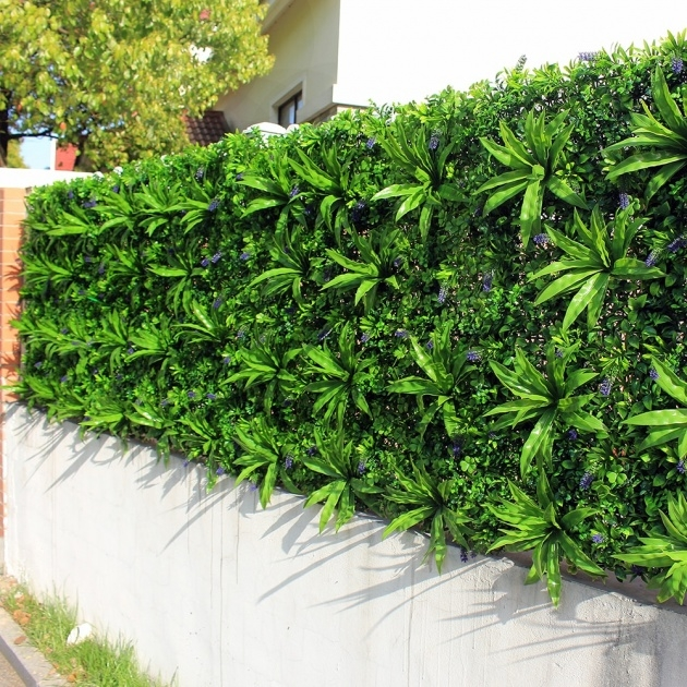 Insanely Wall Garden Plants Photo