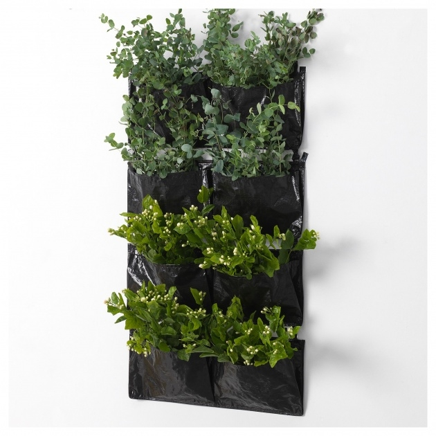 Insanely Wall Mounted Planter Boxes Photo