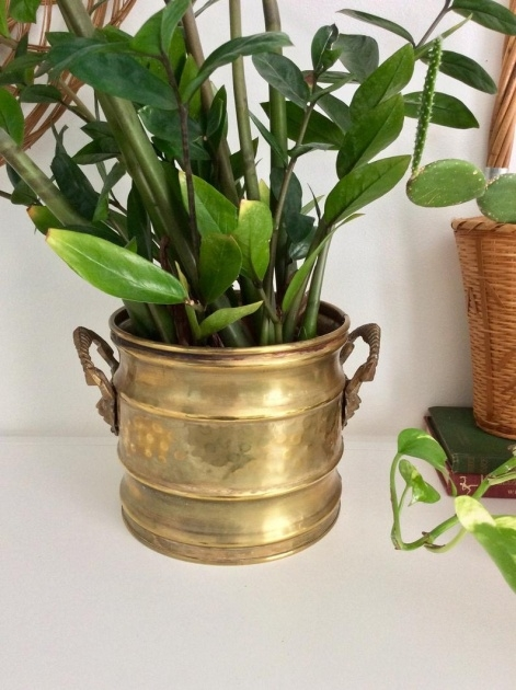 Inspiration Brass Plant Pot Photo