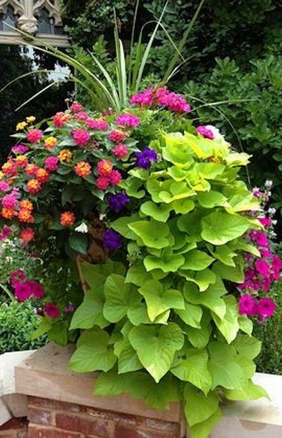 Inspiration Flower Planter Ideas Image