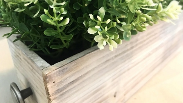 Inspiration Indoor Planter Box Photo
