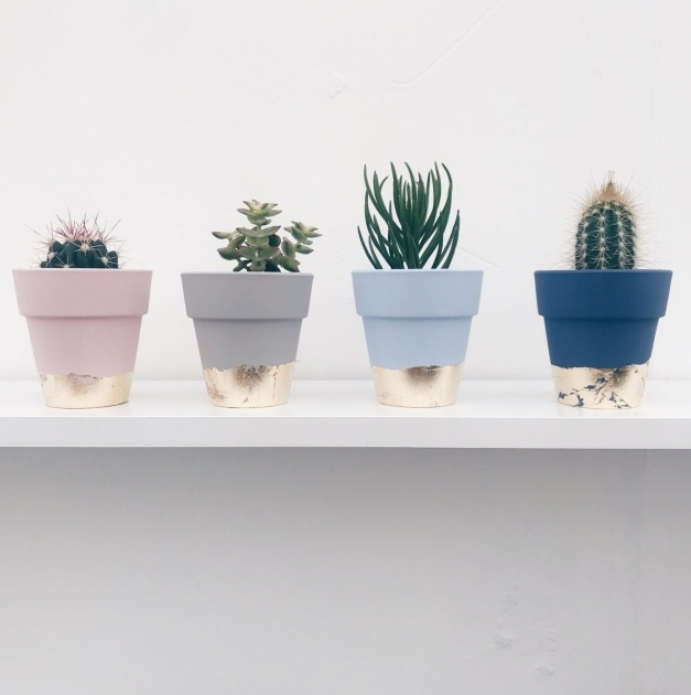 Inspiration Mini Plant Pots Photo