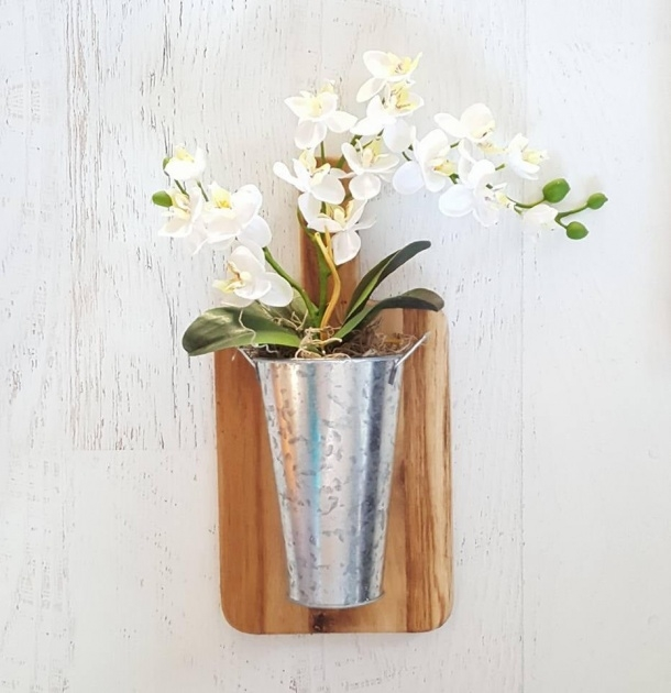 Inspiration Orchid Wall Planter Photo