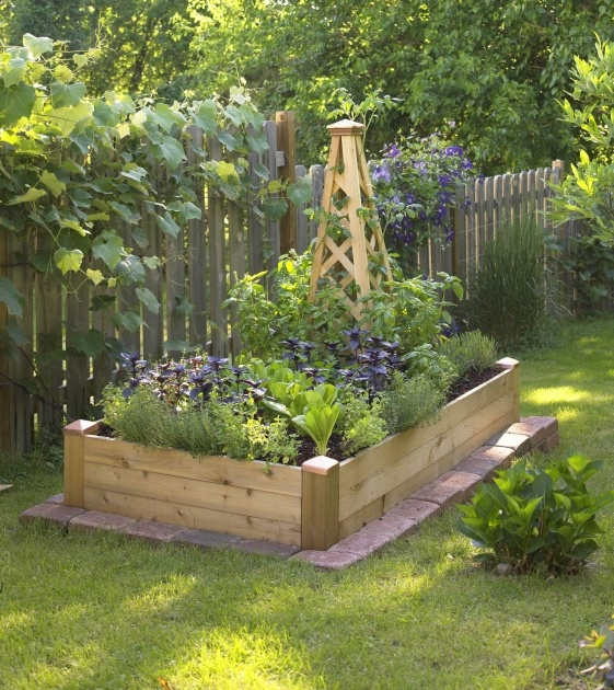 Inspiration Plants For Small Gardens Image