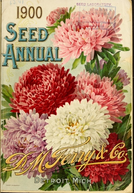 Inspirational Ferry Morse Seed Catalog Picture