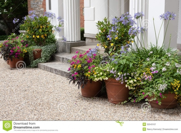 Inspirational Front Entrance Plants Photo