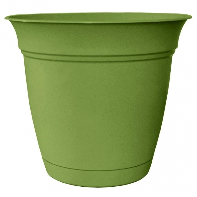 Inspirational Green Plant Pot Picture