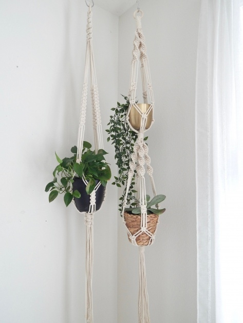 Inspirational Hanging Plant Stand Photo