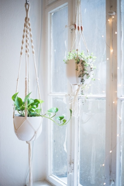 Inspirational How To Make A Plant Hanger Picture