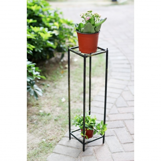 Inspirational Iron Plant Stand Photo