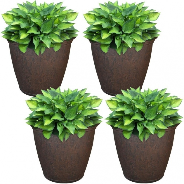 Inspirational Outdoor Plant Pots Photo
