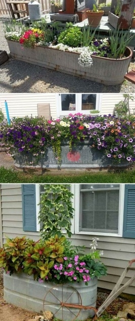 Inspirational Patio Planter Ideas Photo