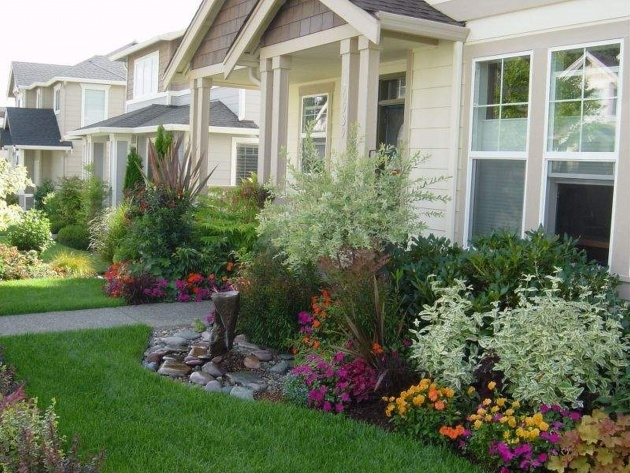 Inspirational Plants For Front Of House Ideas Image