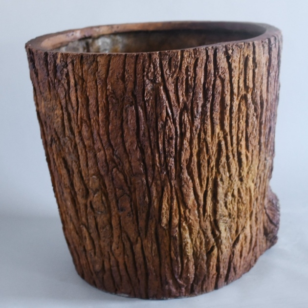 Inspirational Tree Bark Planters Image