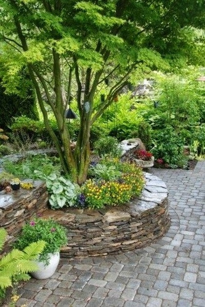 Inspirational Tree Ring Planter Ideas Picture