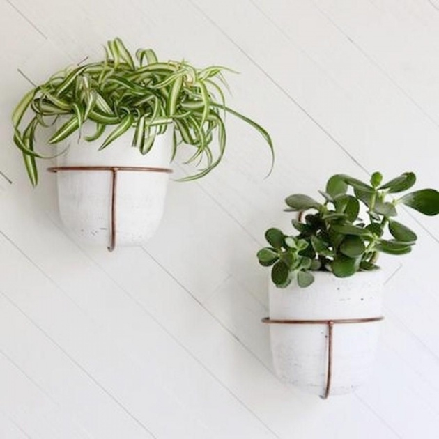 Inspirational Wall Mounted Planters Image