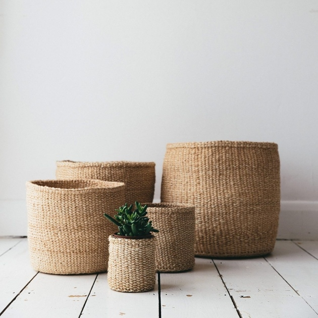 Inspirational Woven Plant Basket Photo