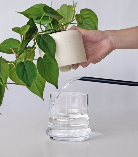 Inspiring Clear Plant Pot Image