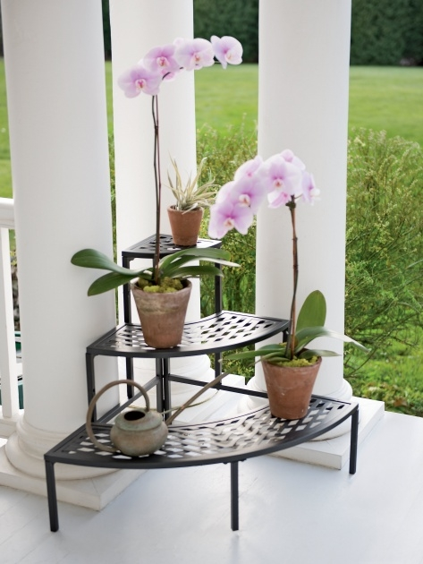 Inspiring Corner Plant Stand Picture