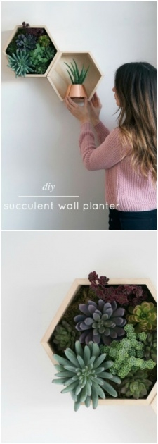 Inspiring Decorative Wall Planters Image