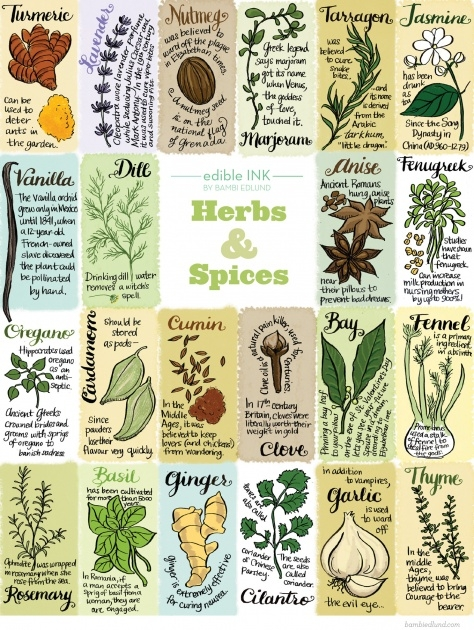 Inspiring Edible Plants Chart Picture
