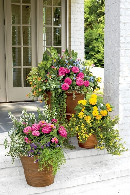 Inspiring Patio Planter Ideas Picture