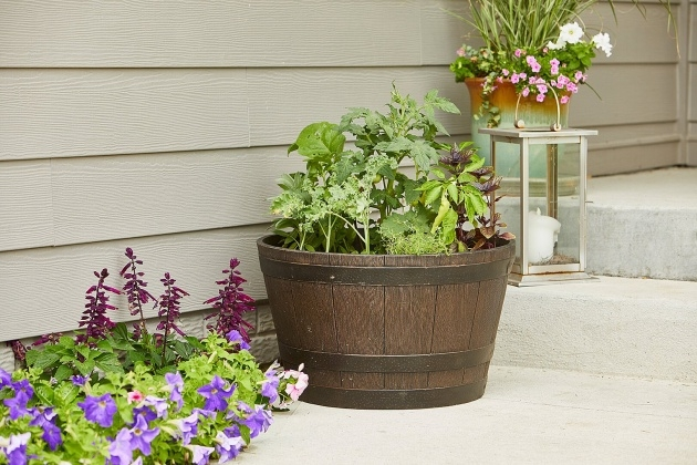 Inspiring Planter Boxes For Growing Vegetables Image
