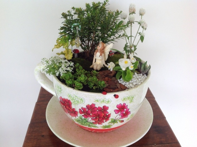 Inspiring Tea Cup Planter Photo