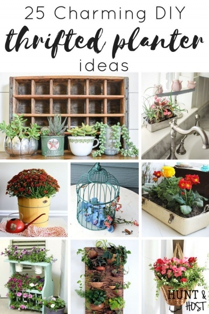 Inspiring Unique Indoor Planters Image