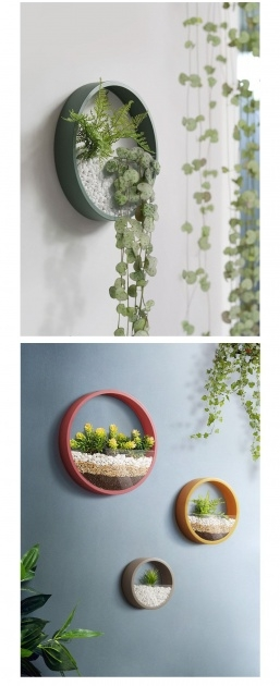 Inspiring Wall Mounted Planter Boxes Image