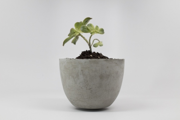 Interesting Diy Cement Planters Picture