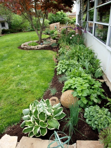 Interesting Flower Bed Plants Picture