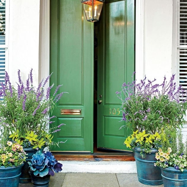 Interesting Front Entrance Plants Photo