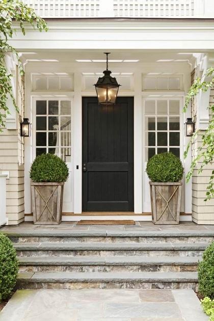 Interesting Front Entrance Plants Picture