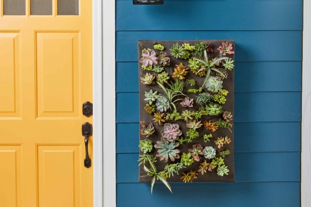 Interesting How To Make A Plant Wall Photo