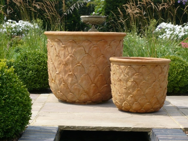 Interesting Large Terracotta Planter Photo