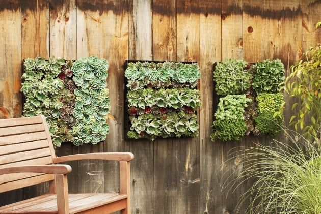 Interesting Living Wall Panel Outdoor Planter Image