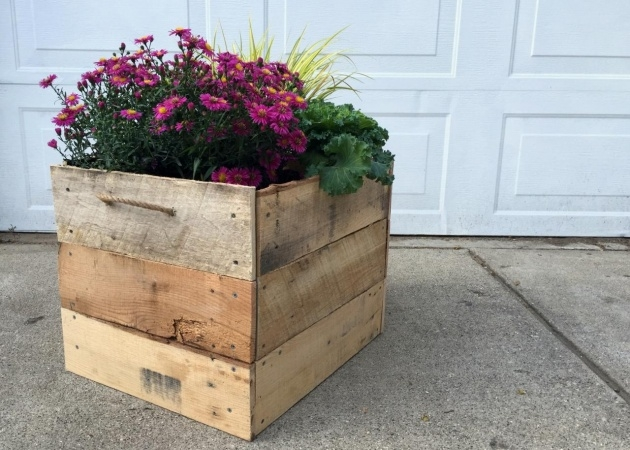 Interesting Pallet Planter Photo