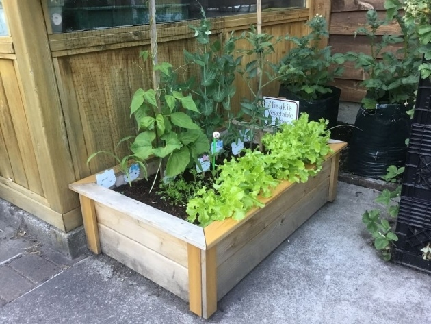 Interesting Planter Boxes For Growing Vegetables Image