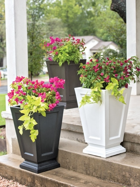 Interesting Self Watering Patio Planters Image