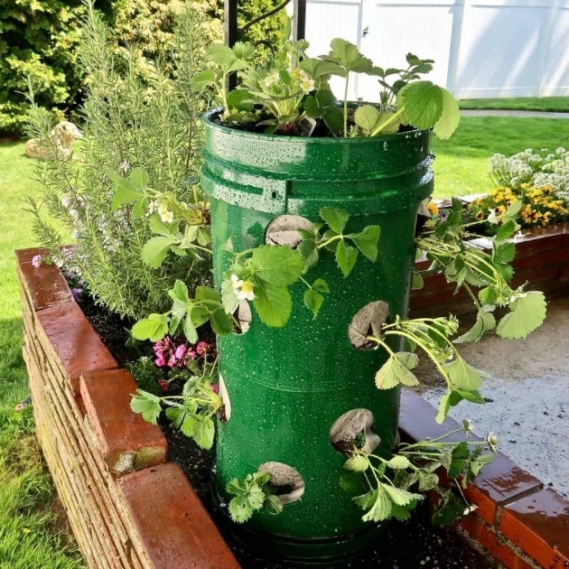 Interesting Strawberry Tower Planter Image