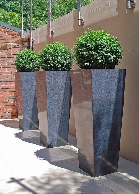 Interesting Tall Plant Pots Image