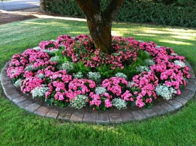 Interesting Tree Ring Planter Ideas Photo
