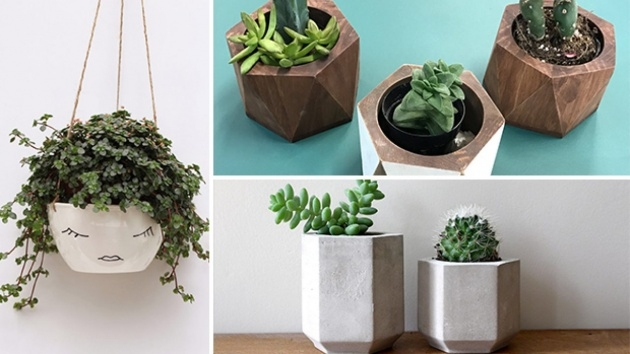 Interesting Unique Indoor Planters Image