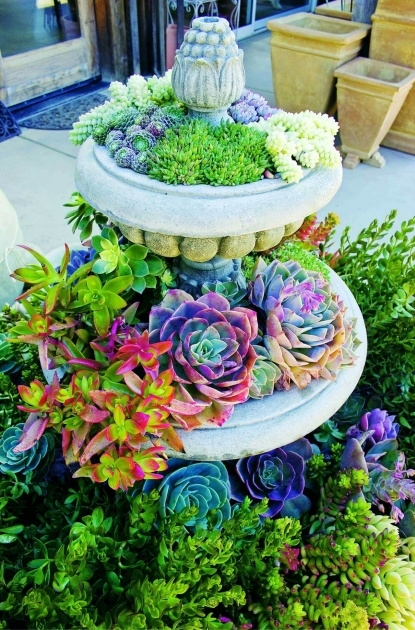 Marvelous Creative Planter Ideas Picture