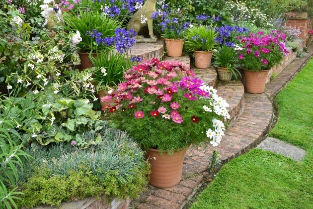 Marvelous Garden Plant Pots Photo